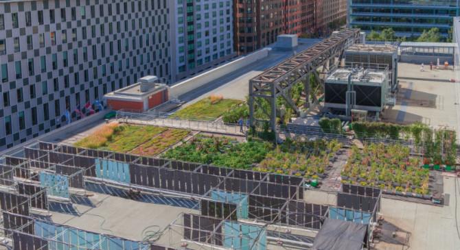 Le Palais des Congrès, laboratoire d'agriculture urbaine